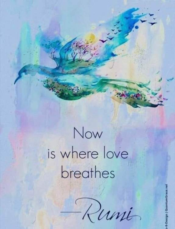 love-breathes-rumi
